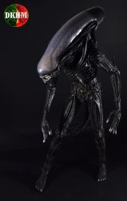 AlienNeca1-4 (1)