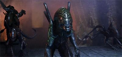 alienvspredator11