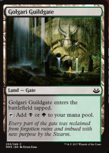Golgari-Guildgate-216x302