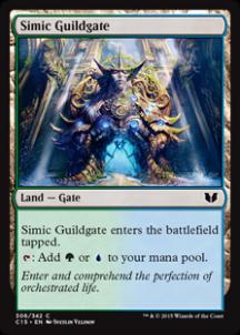 Simic-Guildgate-216x302