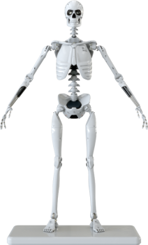 figure-image-1