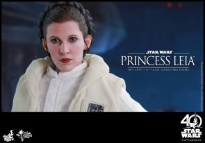 Hot-Toys-ESB-Princess-Leia-016