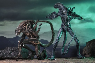 NECA-Aliens-Ultimate-Warrior-Assortment-004