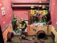 e9d0bda048596fc42908b24b43dd0272--diorama-ideas-turtle-birthday