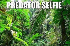 eae72e7f3094e29e4337cea578bee2d0--top-ten-selfie