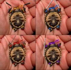 f69dab6b6972327aa171a51ba3d33a67--cute-turtles-ninja-turtles